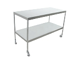 Instrument Table w/ Shelf (24 x 48 x 34) Stainless Steel w/ Heavy Duty Casters